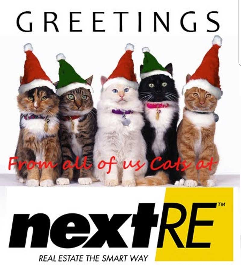 next_greetings_3